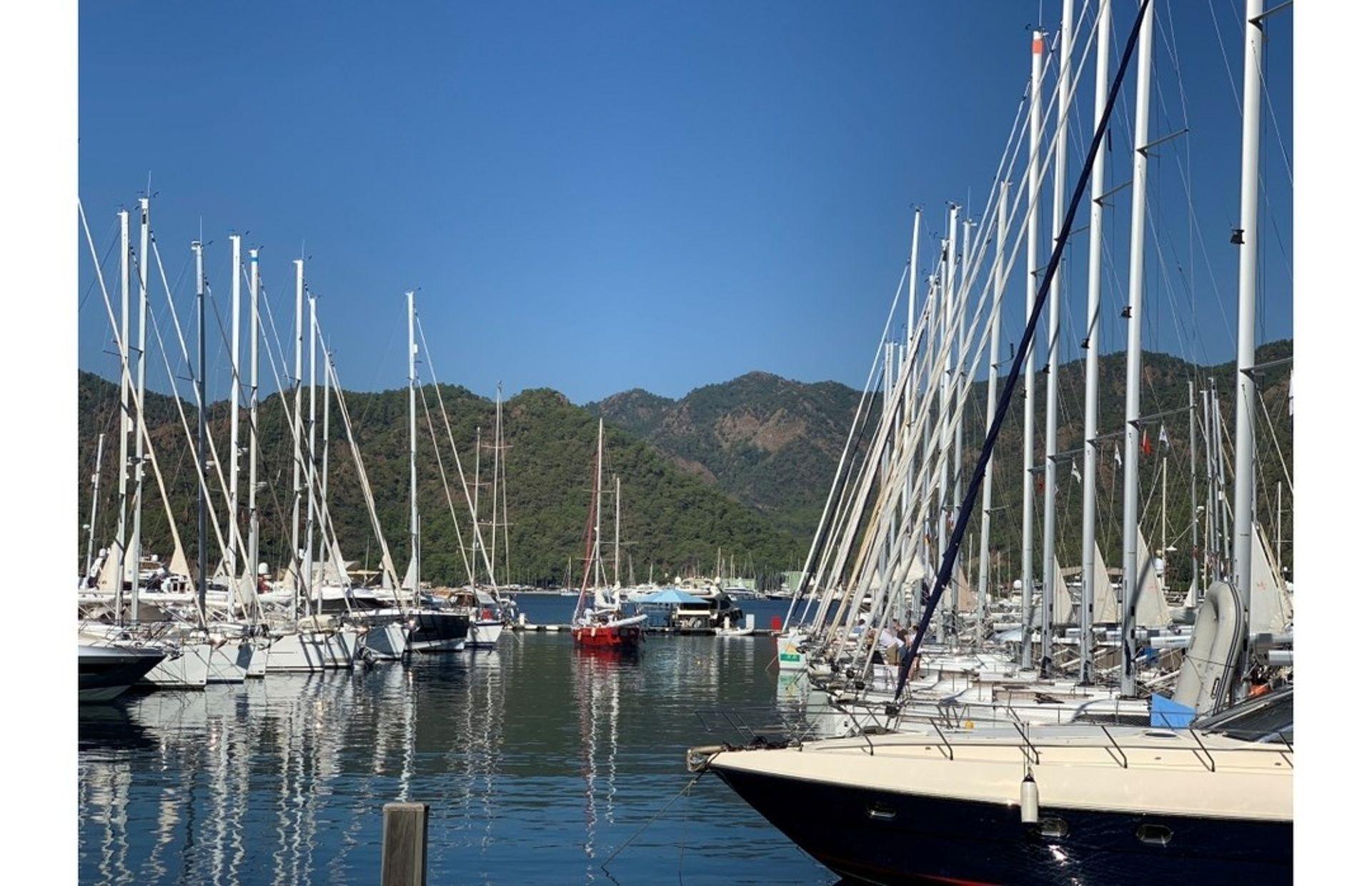 https://media.insailing.com/boat/parusnaya-lodka/image_1596042367243.jpg