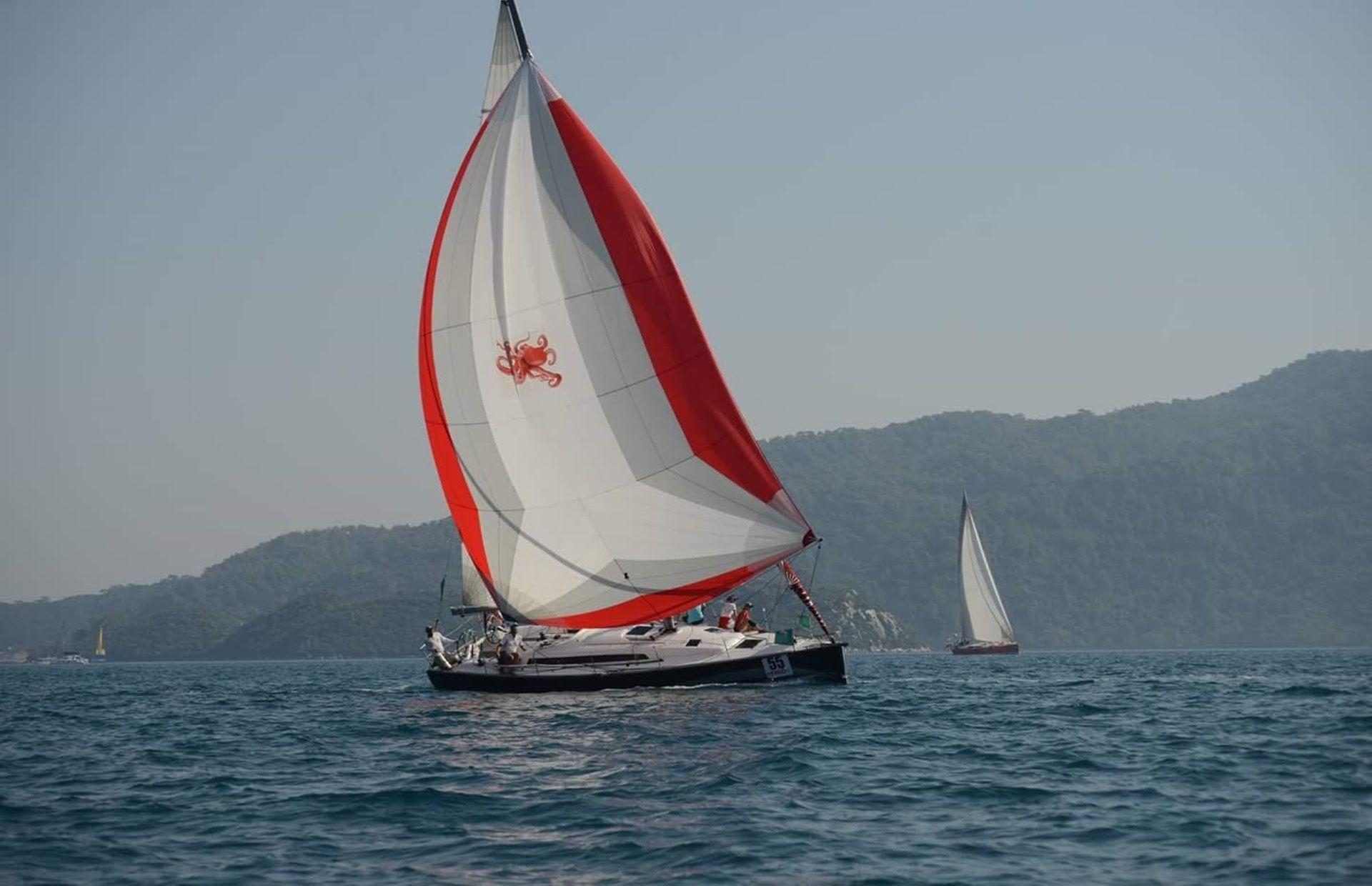 https://media.insailing.com/boat/solona-41/image_1564561696137.jpg