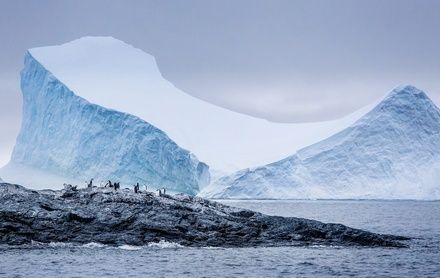 https://media.insailing.com/event/aurora-pod-parusom-v-antarktidu-4/image_1571902500390.jpg