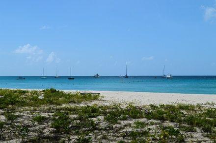 https://media.insailing.com/event/barbados-sailing-week-2020/image_1571743709598.jpg