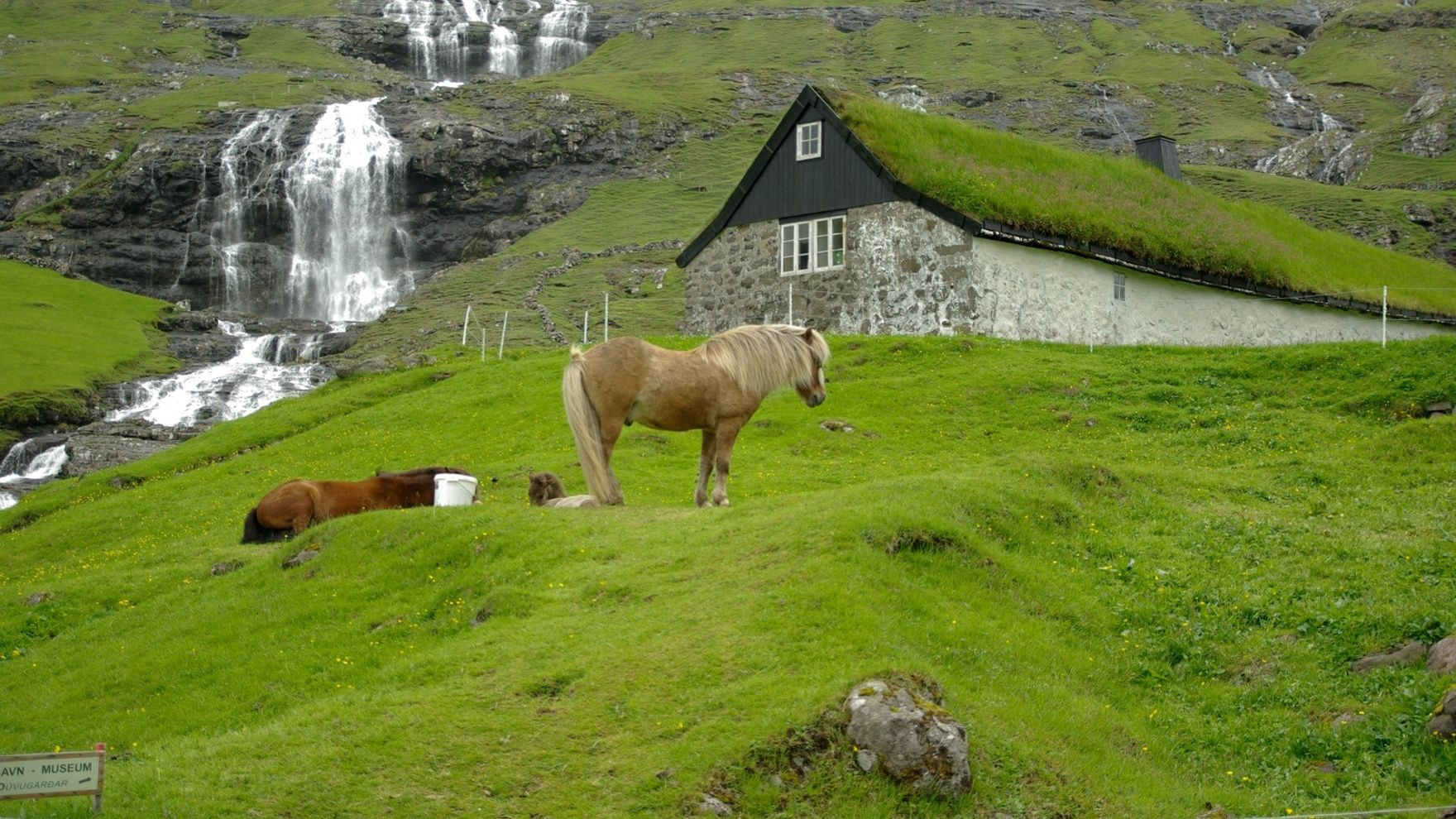 An expedition to the Faroe Islands