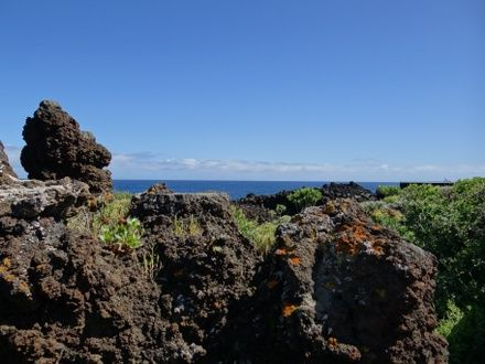 https://media.insailing.com/event/kanary-4-ostrova-tenerife---la-gomera---la-palma---ierro-za-10-dney-310-nm/image_1580307169393.jpg