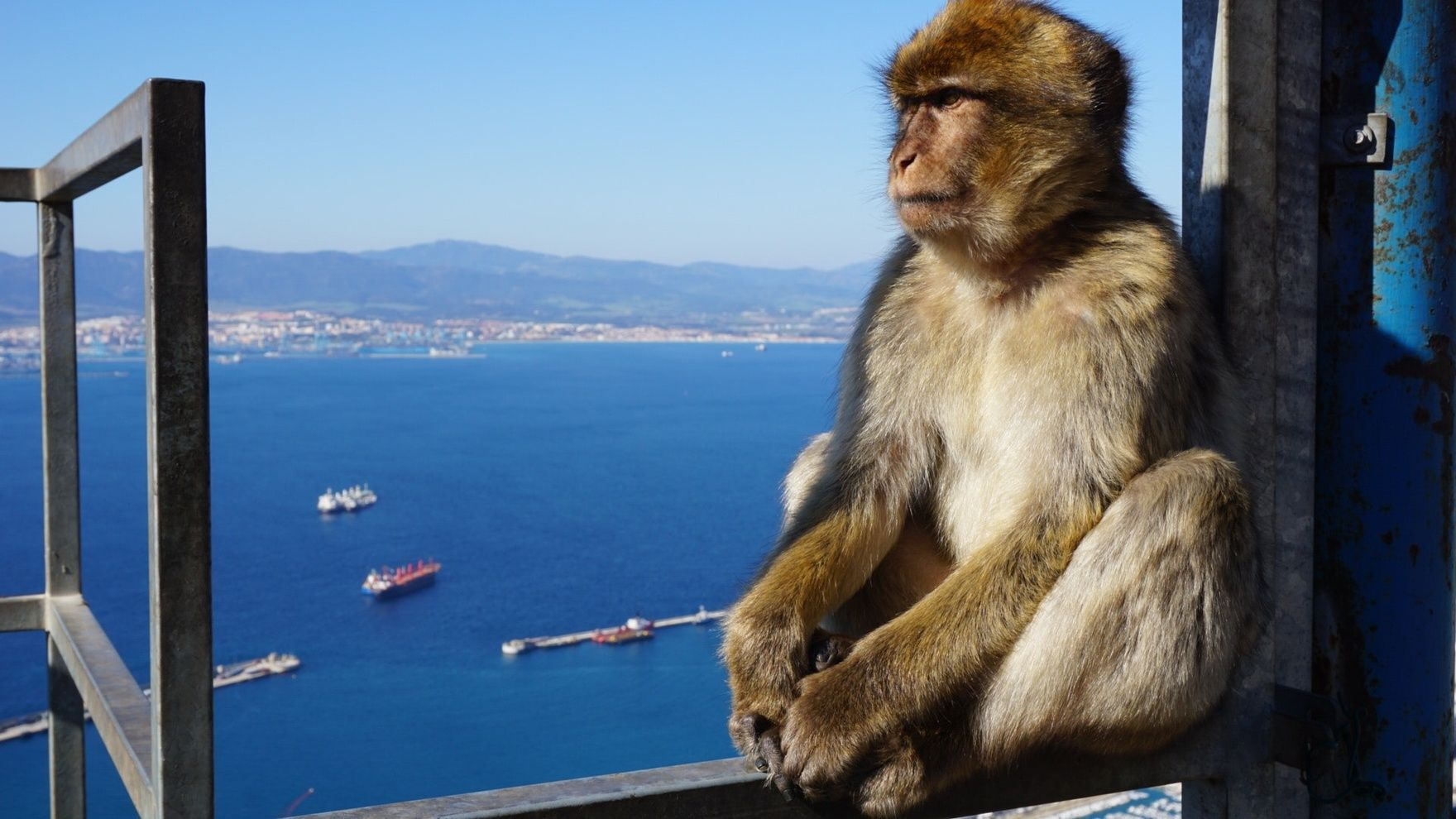 Mile building: Gibraltar— Tenerife