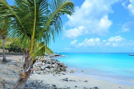 https://media.insailing.com/event/perehod-malye-antilskie-ostrova-2019/image_1574338822268.jpg