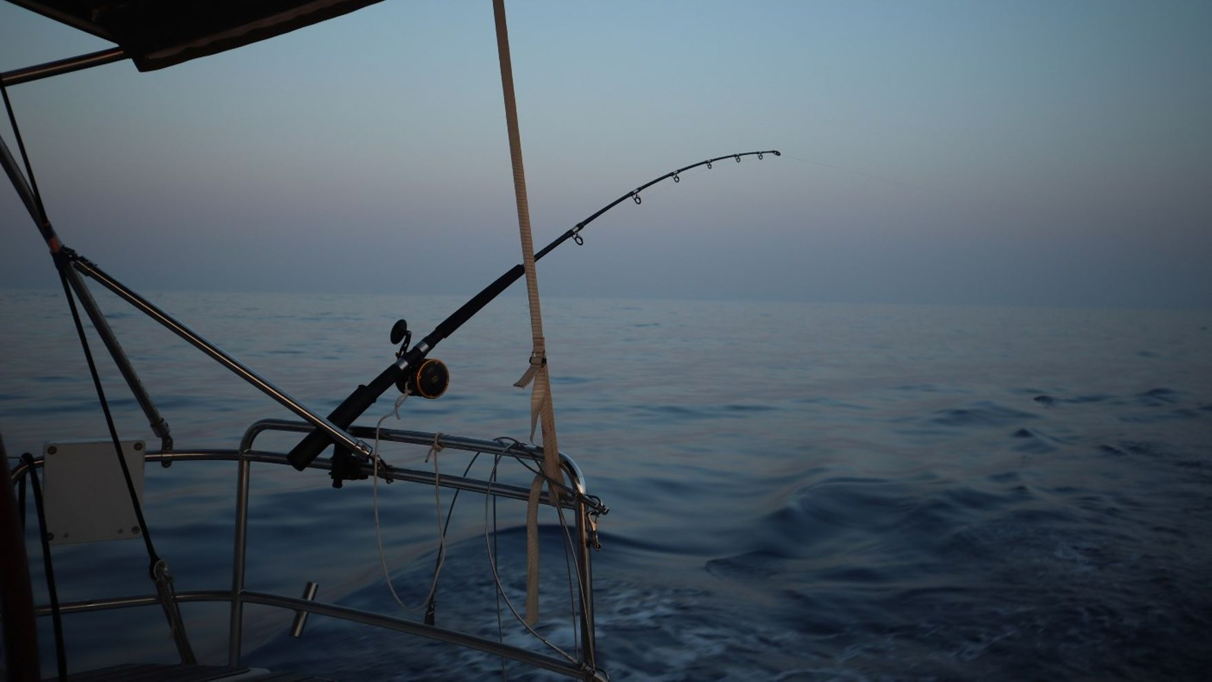 Tuna fishing in Limassol