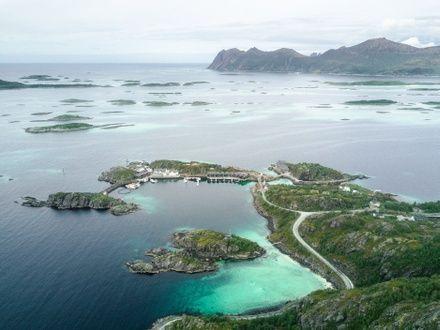 https://media.insailing.com/event/sailing-expedition-to-the-lofoten-islands/image_1597826853020.jpg