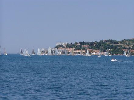 https://media.insailing.com/event/three-countries-regatta-regata-tri-strany/image_1572957371706.jpg