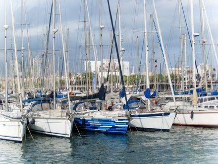 https://media.insailing.com/event/trofeo-la-almadraba-de-la-marina-2019/image_1573825898006.jpg