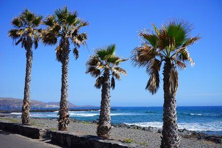 https://media.insailing.com/event/vesna-na-kanarah-4-ostrova-tenerife---la-gomera---la-palma---ierro-za-10-dney-310-nm/image_1580728482795.jpg